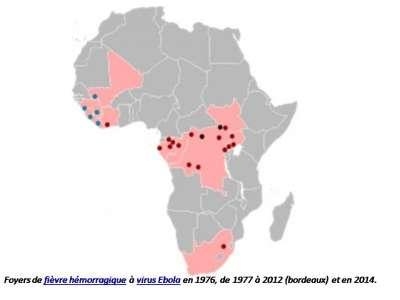 Fièvre hémorragique Ebola.